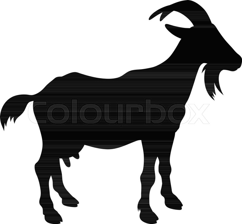 800x739 Goat Silhouette Isolated On White. Vector Illustration Stock