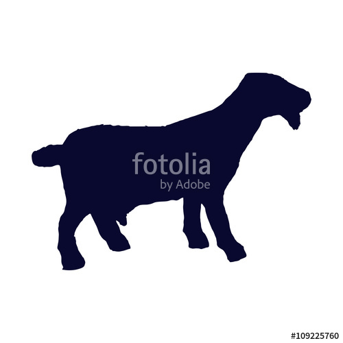 500x500 Billy Goat Silhouette Stock Image And Royalty Free Vector Files