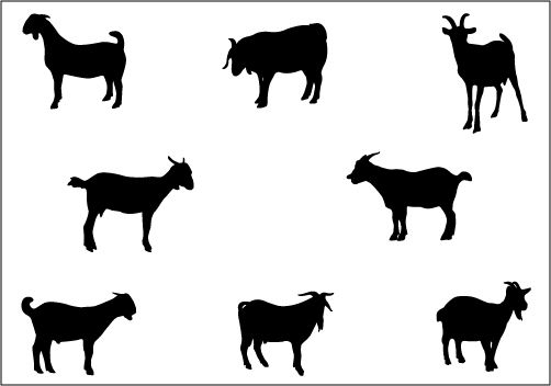 502x352 Dairy Goat Silhouette Vector
