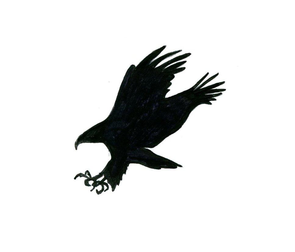 968x825 Eagle's Silhouette By Maviyengec