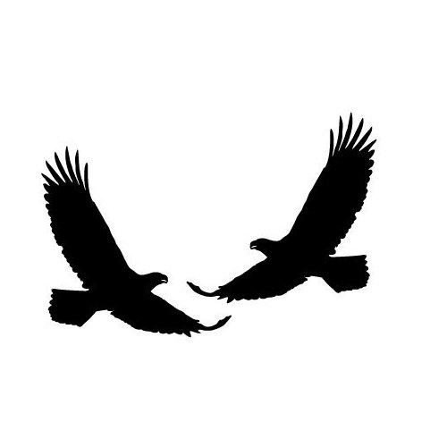 500x500 Eagle Silhouette