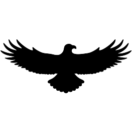 263x262 Flying Eagle Silhouette Templates Eagle Silhouette
