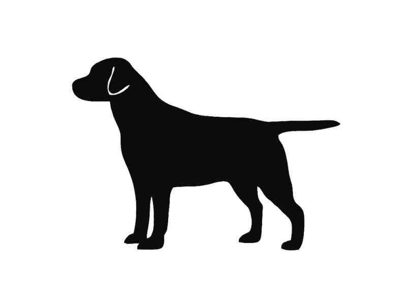 809x607 Retriever Head Outline Black Silhouette Image Of Puppy Sitting