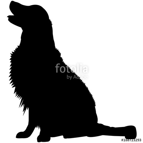 500x500 Golden Retriever Dog Silhouette Vector Graphics Stock Image