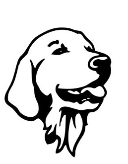 258x330 Golden Retriever Head 2 Decal Sticker