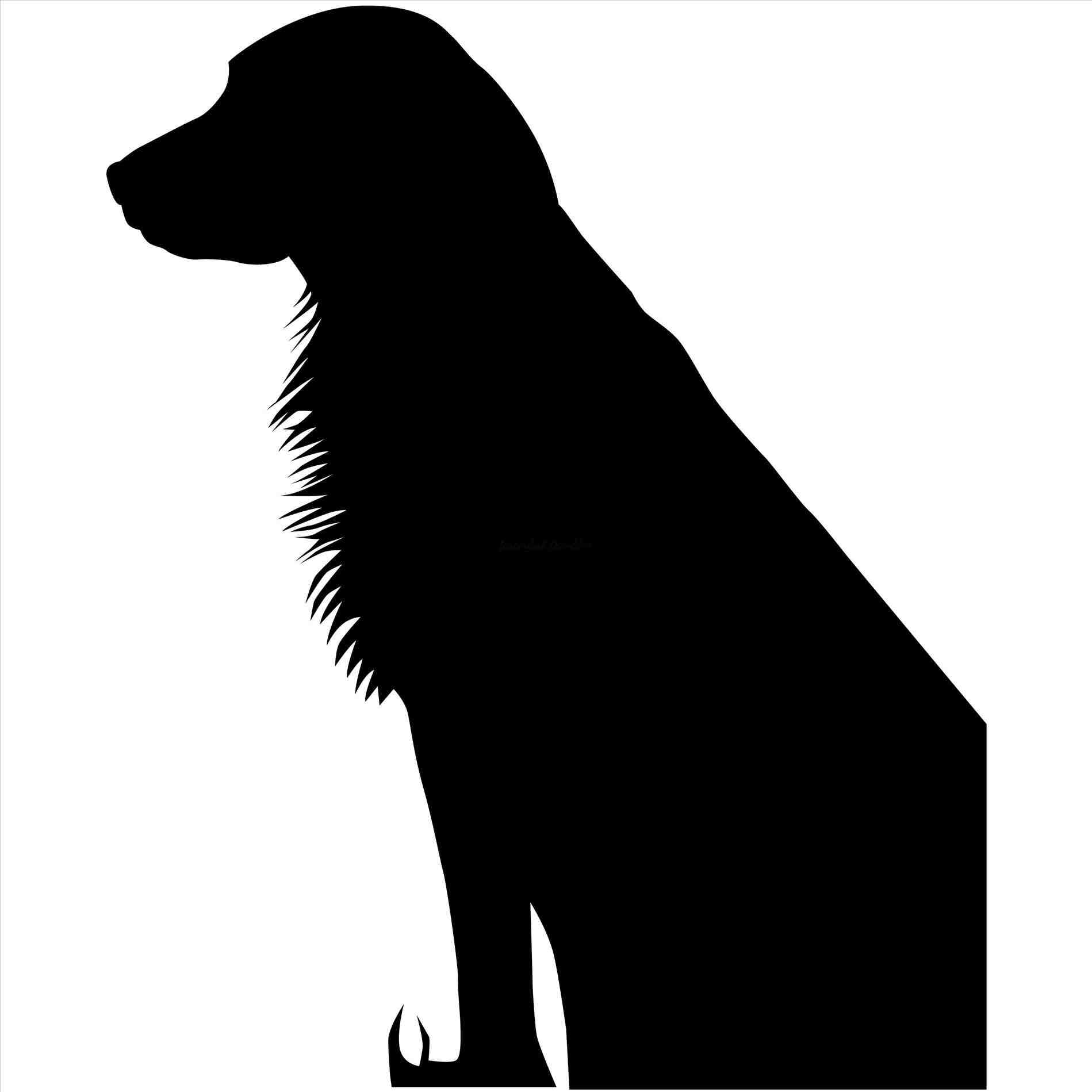 1899x1899 Golden Retriever Silhouette Animalsee.club