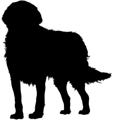 221x235 Golden Retriever Silhouette