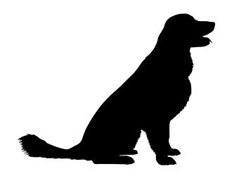340x270 Golden Retriever Silhouette
