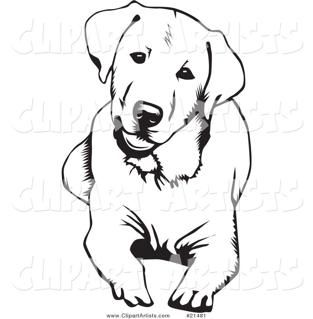1024x1044 Labrador Coloring Pages