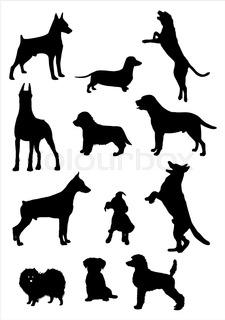 225x320 Set Of Colorful Vector Portraits Of Different Dog Breeds (Brussels