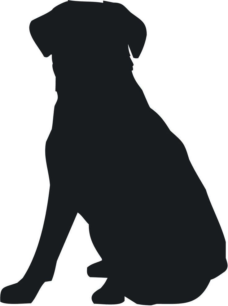 736x986 Golden Retriever Clipart Silhouette Many Interesting Cliparts