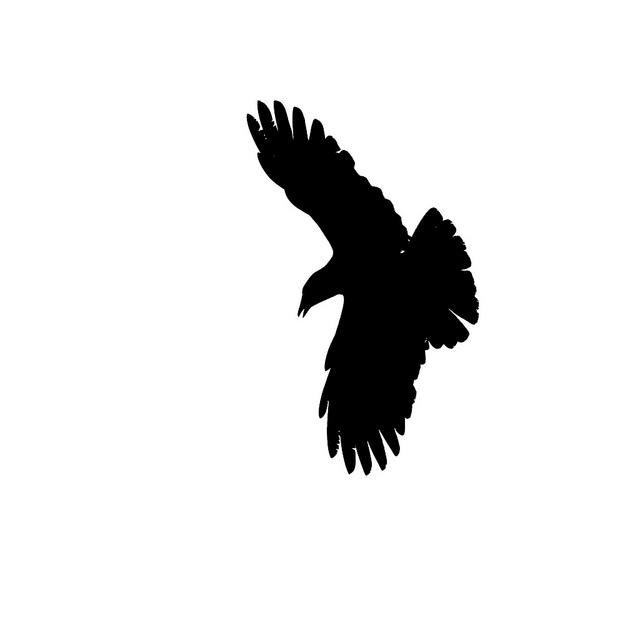 640x640 Raven Silhouette Clipart 2