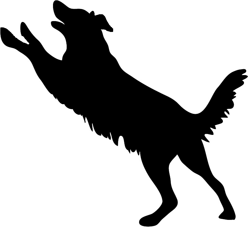 800x732 Dog Sitting Silhouette Clipart