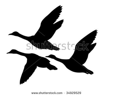 450x383 Vector Silhouette Flying Geese On White Background Gift Ideas