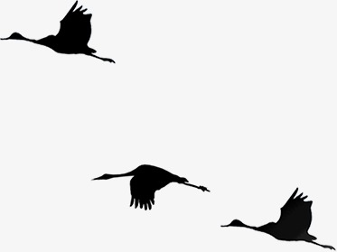 373x279 Chinese Style Flat Silhouette Crane Geese Pattern, Chinese Style