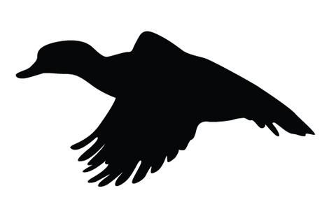 480x309 Duck Flying Silhouette Vector Silhouettes, Free Printables