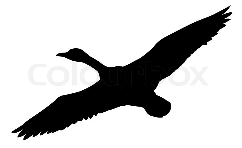 Goose Silhouette Template At Getdrawings Com Free For