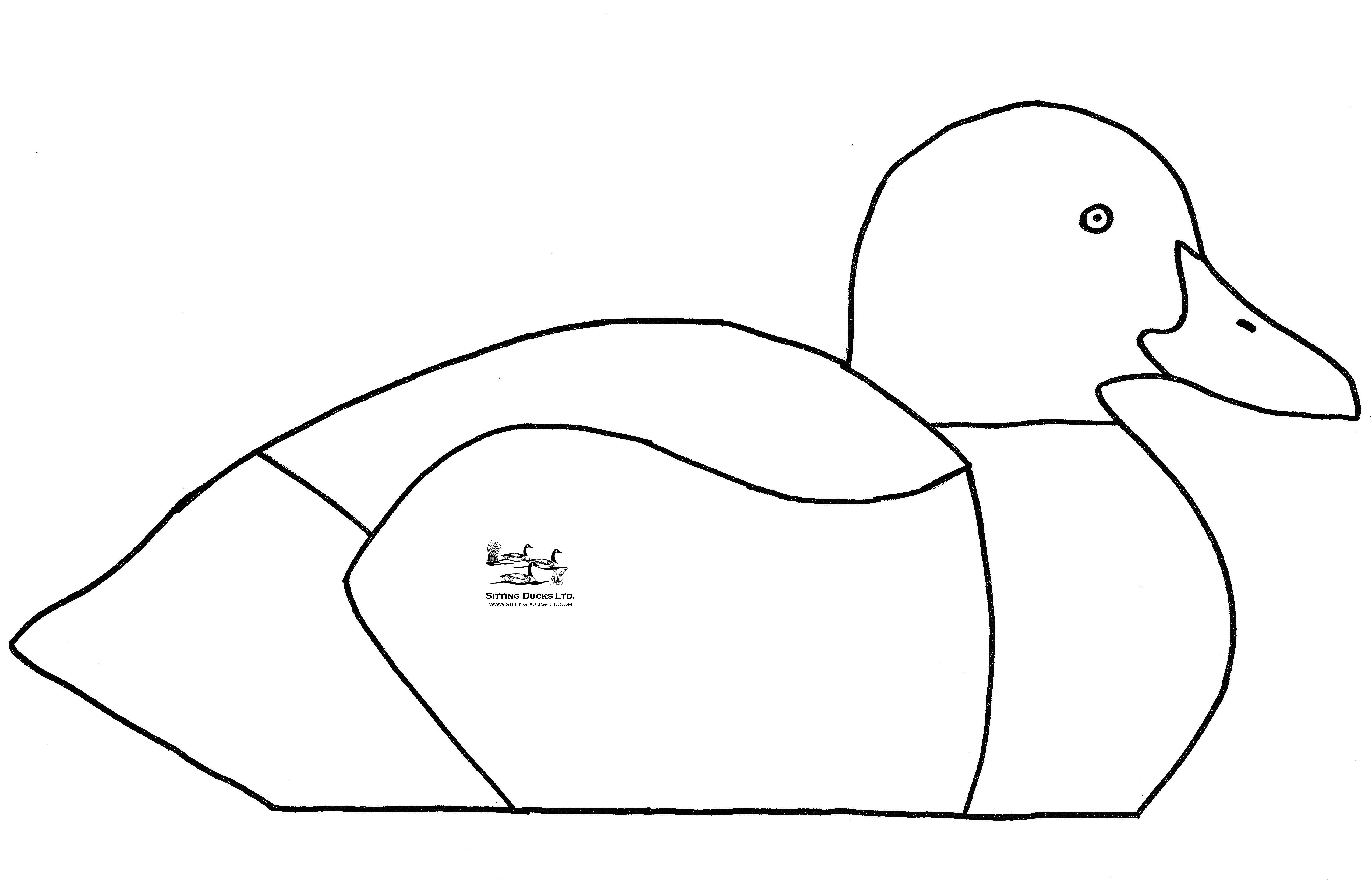 5100x3297 Goose Decoys, V Board Goose Amp Duck Decoys From Sitting Ducks, Ltd
