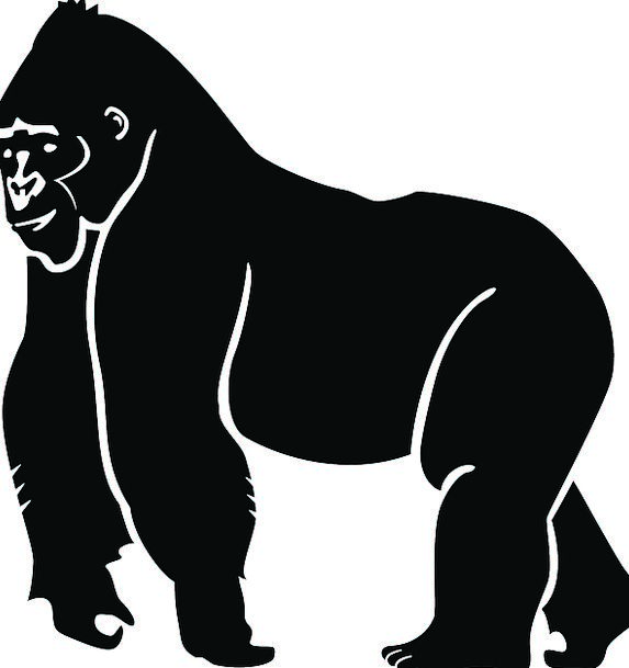 573x609 Gorilla, Brute, Outline, Black, Dark, Silhouette, Animal, Physical