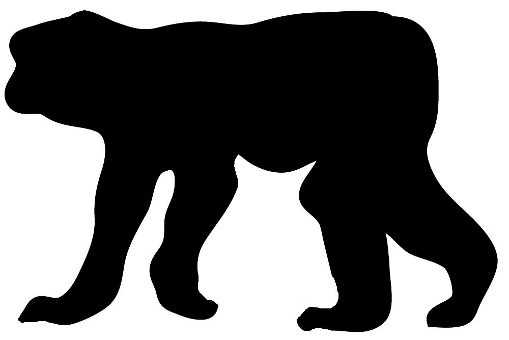 1000x667 Silhouette Of Walking Monkey Zoo Animals Unit