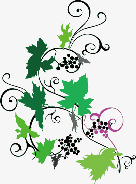 466x630 Vine Silhouette, Grape Tree, Sketch, Material Png And Vector