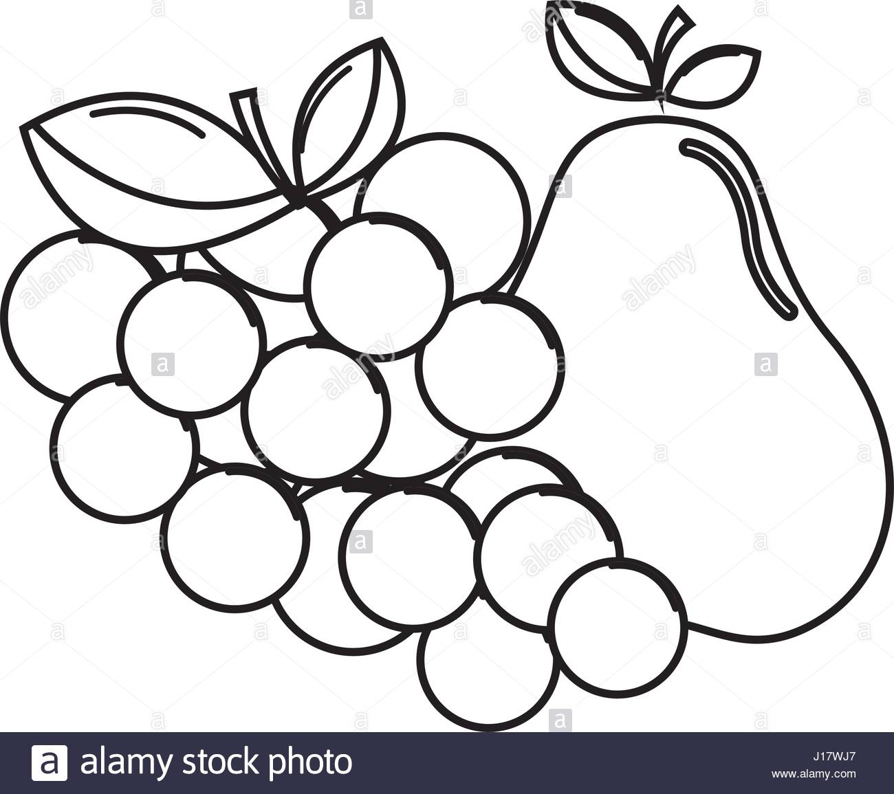 1300x1155 Silhouette Grape And Pear Fruits Icon Stock Vector Art