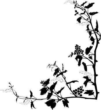 348x380 Corner Frame With Silhouette Of Vines. Grape Vines And Silhouettes