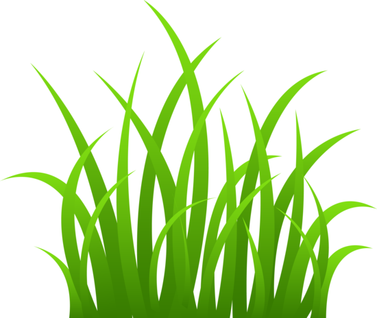 550x464 Grass Clip Art Grass On Transparent Background Silhouettes