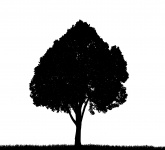 165x150 Tree, Grass Silhouette Clipart Free Stock Photo