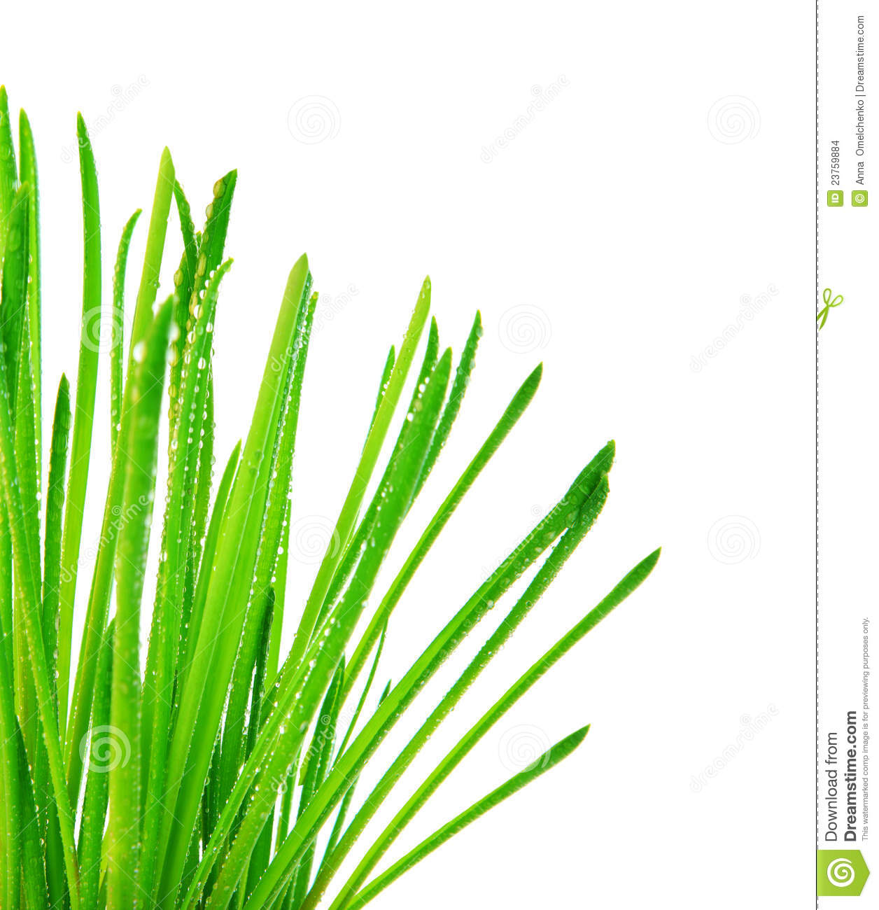 grass silhouette free at getdrawings com free for personal use rh getdrawings com