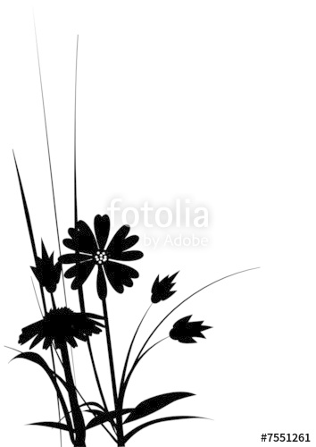 354x500 Silhouette Daisy Stock Image And Royalty Free Vector Files