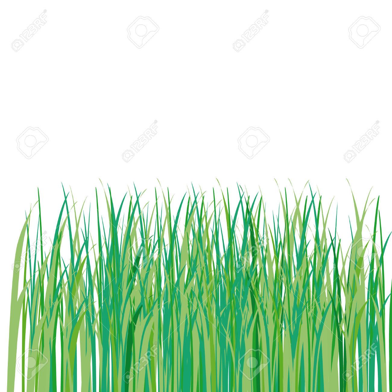 1300x1300 Drawn Grass Illustration 3339157