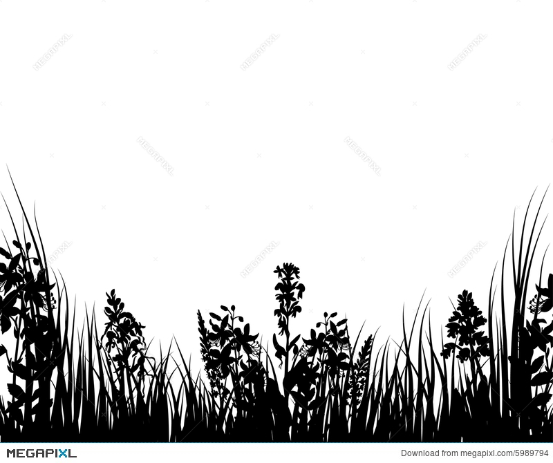 800x670 Vector Grass And Flowers Illustration 5989794