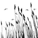 160x160 Real Grass Silhouette