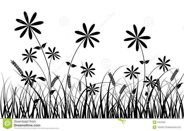 736x526 63 Best Tree Amp Flowers Silhouettes Images