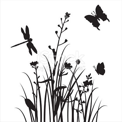 416x416 Vector Silhouettes Of Flowers Grass With Butterflies