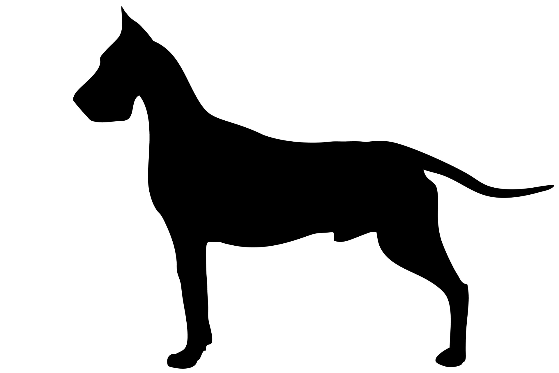 1920x1280 Dog, Great Dane Black Silhouette Free Stock Photo