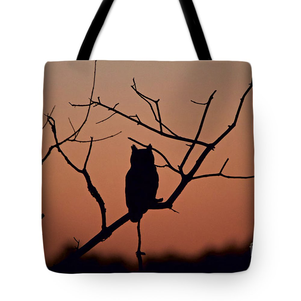 1000x1000 Great Horned Owl Silhouette Tote Bag For Sale By Peter Gray