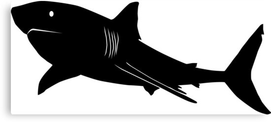 550x247 Great White Shark Silhouette (Black) Canvas Prints By
