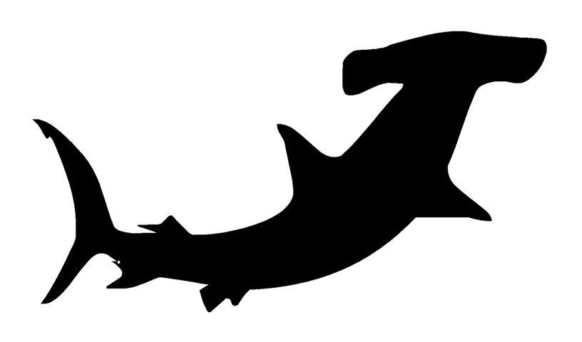 816x480 Hammerhead Shark Silhouette 1 Decal Sticker