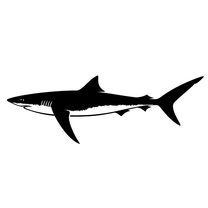 700x700 Blue Shark Silhouette Isolated On White Wall Mural We