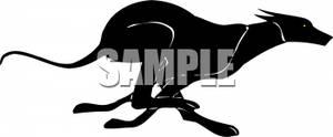 300x124 Silhouette Of Fast Running Greyhound