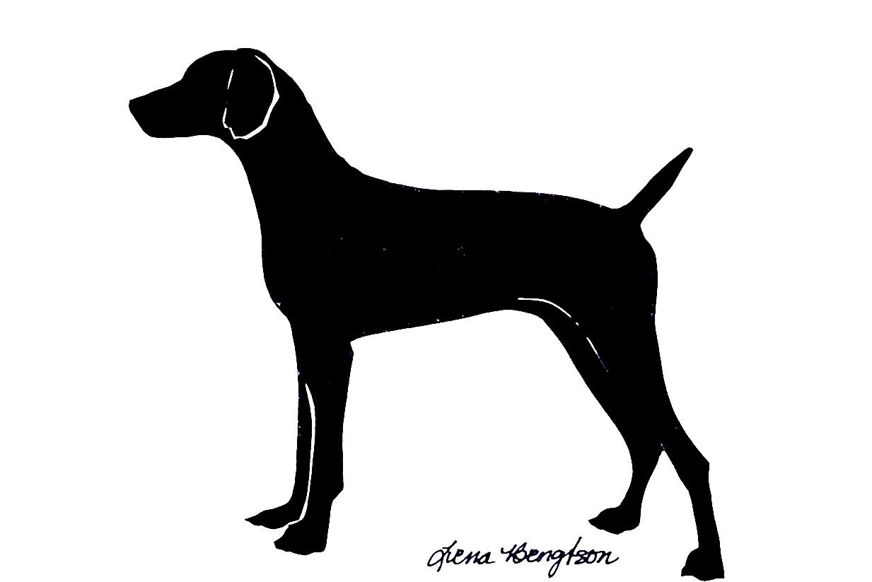 1233x823 Greyhound Clip Art