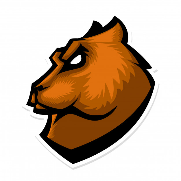 626x626 Grizzly Bear Head Mascot Logo Vector Premium Download
