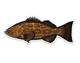 340x270 Grouper Decal Etsy