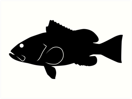 549x413 Red Grouper Fish Silhouette (Black) Art Prints By