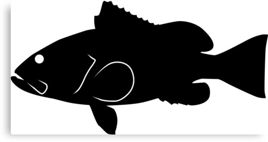 550x292 Red Grouper Fish Silhouette (Black) Canvas Prints By