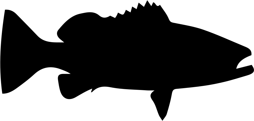 981x468 Warsaw Grouper Fish Shape Svg Png Icon Free Download ( 73402