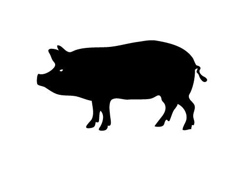 500x350 Pig Vector Silhouette Face