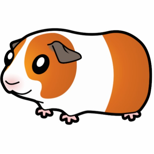 512x512 Unusual Guinea Pig Clipart Puppy Coloring Pages Drawn Color Pencil